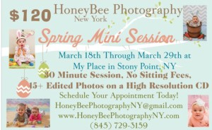 Honeybee spring session