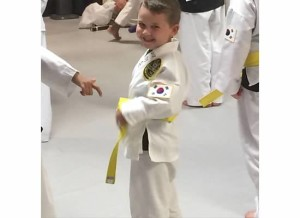 A TKD Yellow Test 2