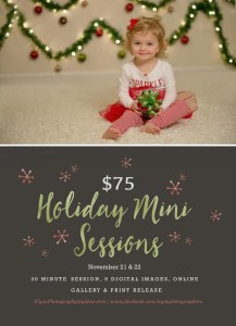 IC YOu HOliday Minis 2015