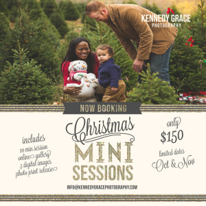 Kennedy Grace ChristmasMIniSessions 2015