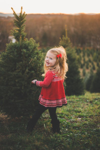 View More: http://kennedygracephotography.pass.us/mj